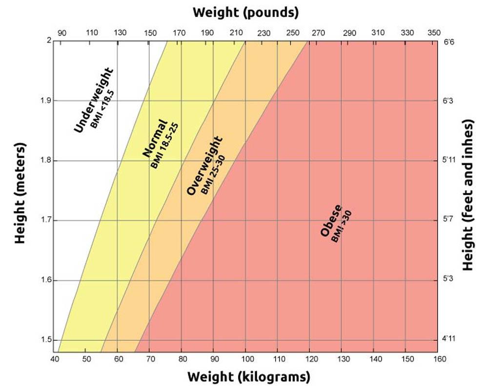 CareAcross-Body-Mass-Index-chart