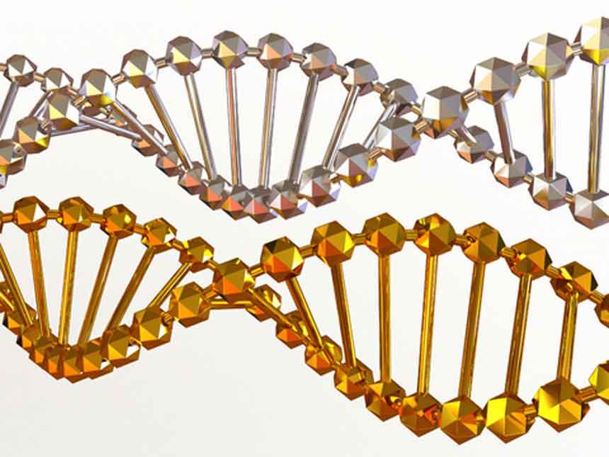 CareAcross-DNA strands