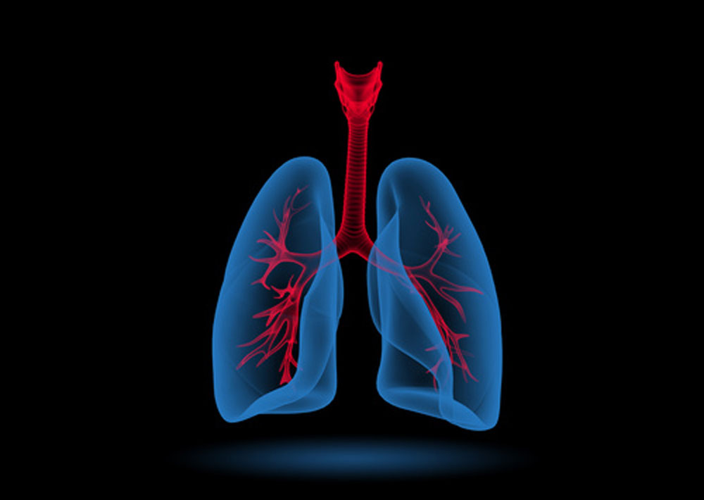 CareAcross-lungs-graphic